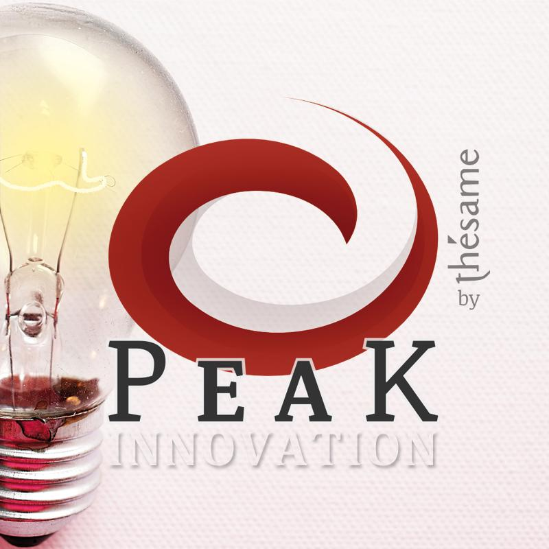 Programme PEAK Innovation