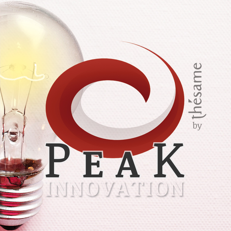 PEAK Innovation Program